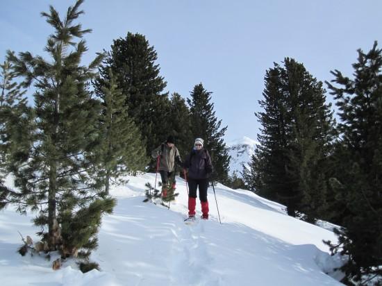 schneeschuhwandern-dolomiten-winter