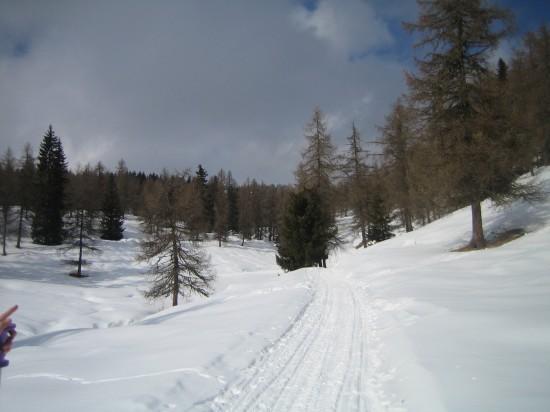 Schneeschuhwandern-Sarntehin-Suedtirol-Wandern