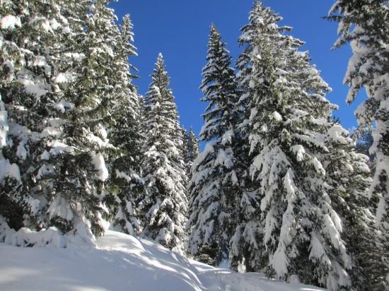 winterwandern-Monzonital-schneeschuhe-Dolomiten