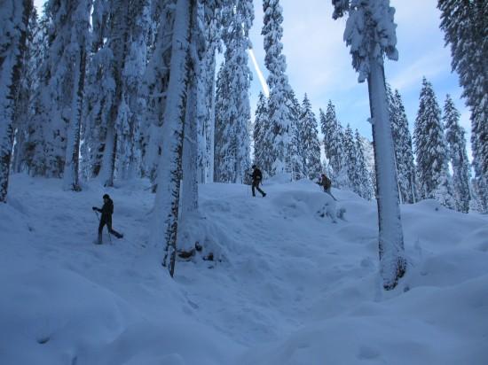 schneeschuh-wandern-karersee-latemar-dolomiten